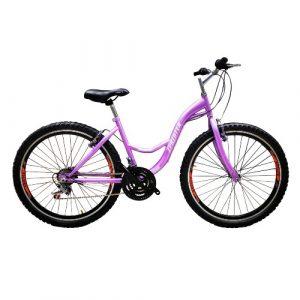Bicicleta Campera Urban Zprinter Aro 26